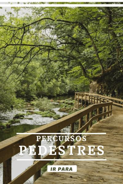 Centro Aventura - Tours Natureza 6